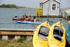 Kayakers take off to explore the Smith Island Water Trail.