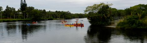 Rent a kayak at Manatee Park for an up close view of manatees in the Orange River.
