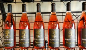 Harvest Ridge's Country Bloom, a blush chambourcin newly released.