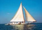 The Skipjack Rebecca T. Ruark