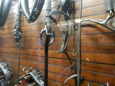 There's even a tack room in the stable at the Roosevelts' Springwood.