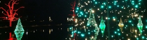 Christmas trees float across a Longwood pond.