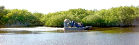 Rush hour in the Everglades. Another airboat passes during our tour.