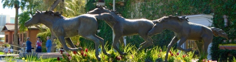 Wild horses seem to run through the center of Od Town Scottsdale. It's quite a striking sculpture.