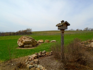 Even the birdhouse overlooking the vineyards has a green roof.