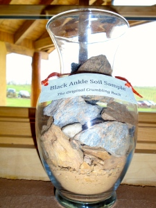 The soil here wouldn't grow anything, they say. Perfect for grapes. A sample of the rocky soil is displayed in the tasting room.