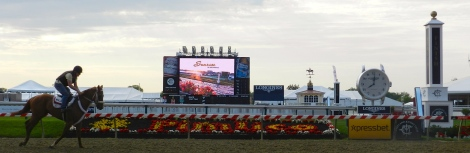 An early-morning run near the finish line at Pimlico