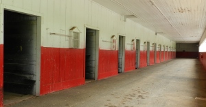 Some of the stalls in the original barn built by Vanderbilt.