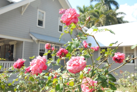 The Edison house is surrounded by flowers.