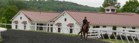 An early morning jog for Dmitri and Feel Proud, a homebred race horse.