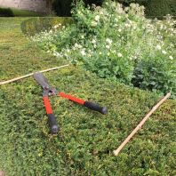 Gardening tools remain behind on a hedge in the garden near the Musee des Impressionismes adjacent to Monet's house and gardens.