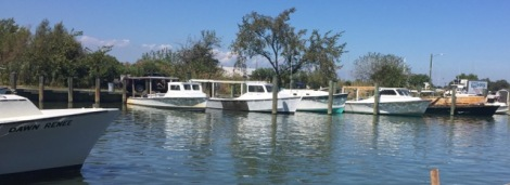 Workboats rest in Dogwood Harbor after a day of crabbing in the waters around Tilghman Island.