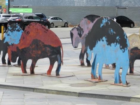 Denver_Buffalo